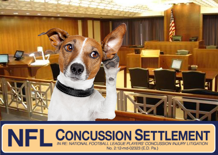 NFL Concussion Settlement Hearing January 1, 2019