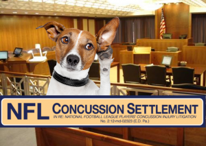 NFL Concussion Settlement Hearing