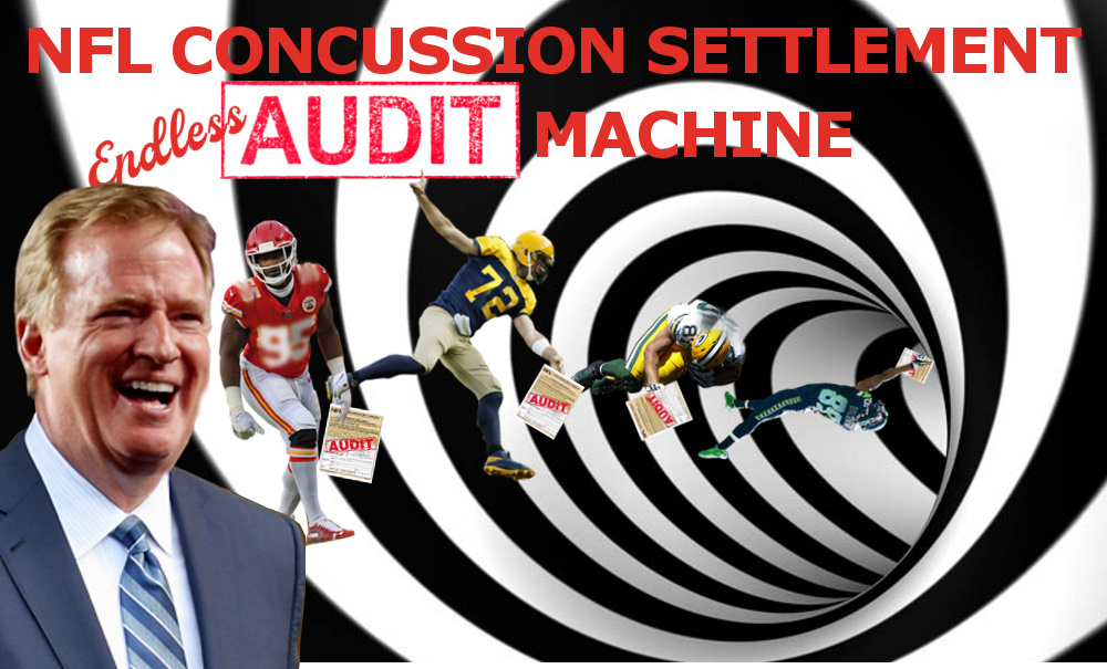 endless audit Roger Goodell NFL