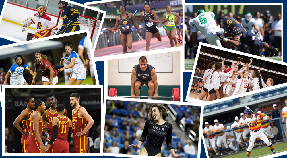 college athlete collage
