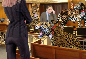 leopards in the court